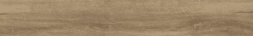 S1304-Bonega